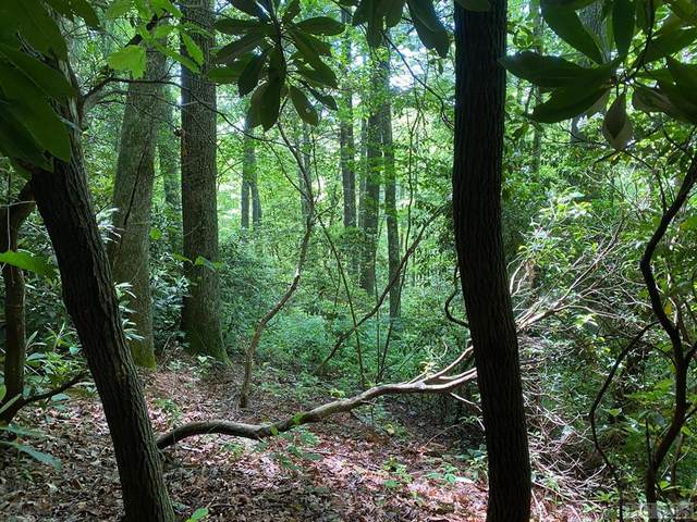Lot 52 Hickory Drive, Sapphire, NC 28774 (MLS #97066) :: Berkshire Hathaway HomeServices Meadows Mountain Realty