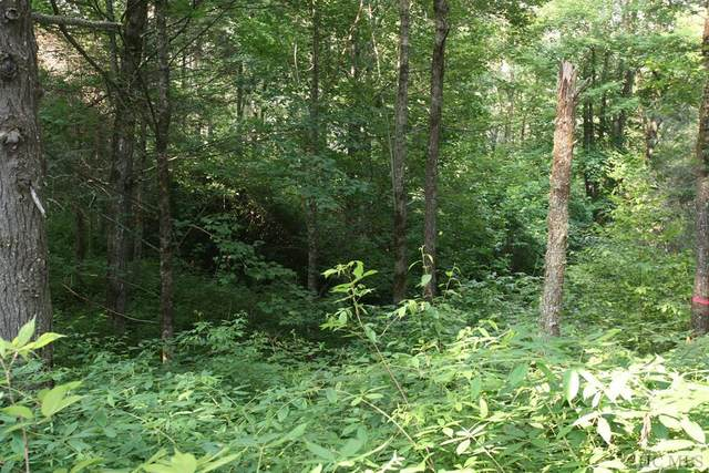 Lot 32 Compass Rose Way, Cullowhee, NC 28723 (MLS #97097) :: Berkshire Hathaway HomeServices Meadows Mountain Realty