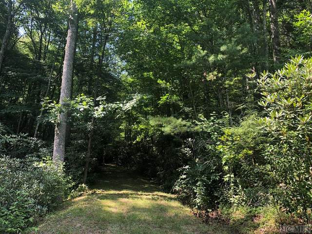TBD West Marlett Road, Glenville, NC 28723 (MLS #97148) :: Berkshire Hathaway HomeServices Meadows Mountain Realty