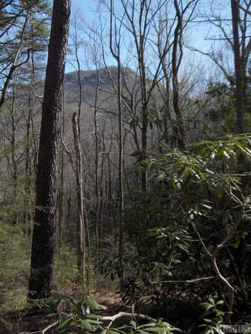 2626 Bull Pen Road, Cashiers, NC 28717 (MLS #97163) :: Berkshire Hathaway HomeServices Meadows Mountain Realty