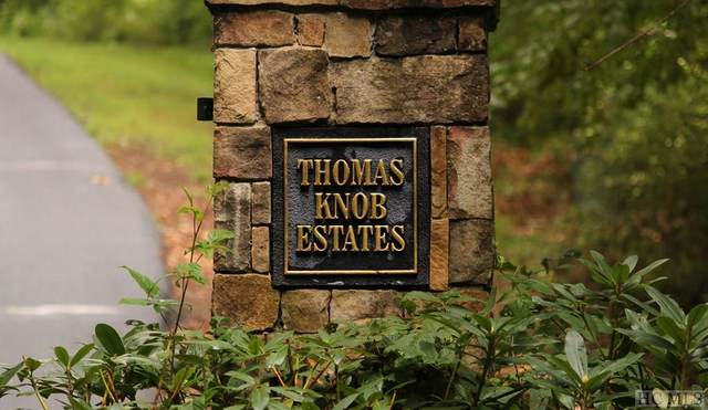 Lot 3 Thomas Knob Trail, Scaly Mountain, NC 28775 (MLS #97179) :: Berkshire Hathaway HomeServices Meadows Mountain Realty