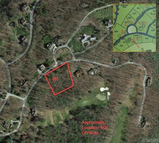 Lot 208 Audubon Trail, Cashiers, NC 28717 (MLS #97201) :: Berkshire Hathaway HomeServices Meadows Mountain Realty