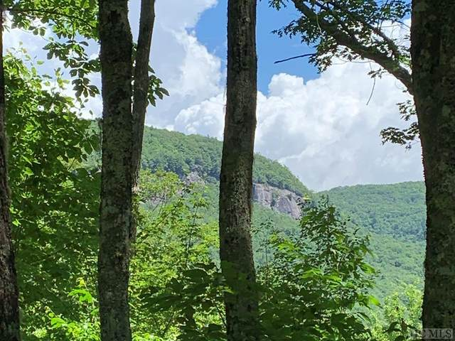 Lot 2 Panthertown Road, Lake Toxaway, NC 28747 (MLS #97202) :: Berkshire Hathaway HomeServices Meadows Mountain Realty