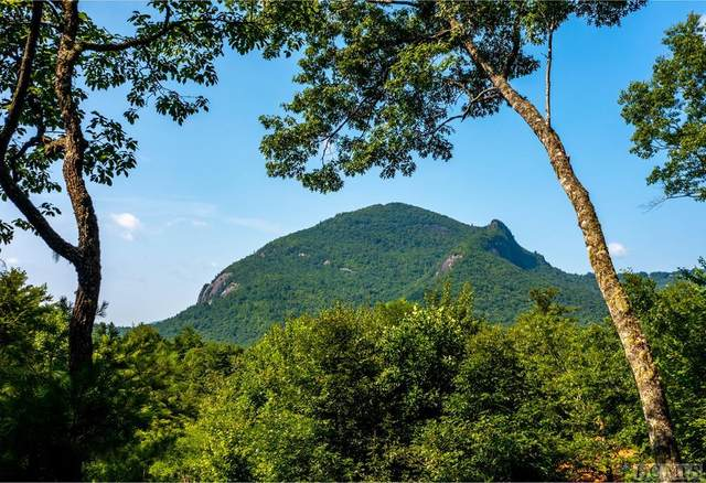 69 Silver Slip Falls, Cashiers, NC 28717 (MLS #97260) :: Berkshire Hathaway HomeServices Meadows Mountain Realty