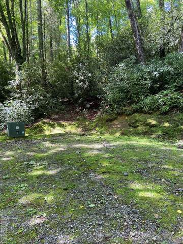 Lot 3 Receptive Drive, Cullowhee, NC 28723 (MLS #97272) :: Berkshire Hathaway HomeServices Meadows Mountain Realty