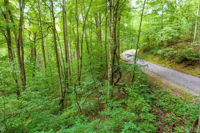 Lot 34 Rainbow Trout, Tuckasegee, NC 28783 (MLS #97290) :: Berkshire Hathaway HomeServices Meadows Mountain Realty