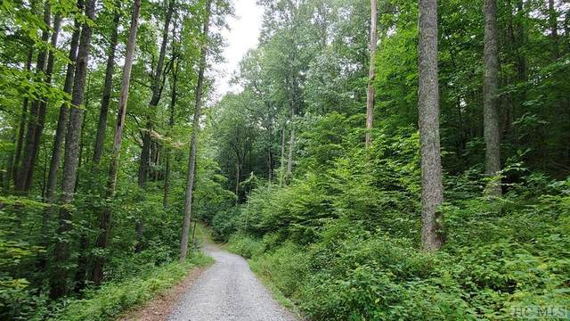 0 Raven Ridge Road, Scaly Mountain, NC 28775 (MLS #97317) :: Berkshire Hathaway HomeServices Meadows Mountain Realty