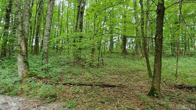 0 Raven Ridge Road, Scaly Mountain, NC 28775 (MLS #97319) :: Berkshire Hathaway HomeServices Meadows Mountain Realty