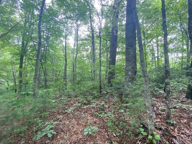 3 & 4 Gem Creek Road, Cullowhee, NC 28723 (MLS #97329) :: Berkshire Hathaway HomeServices Meadows Mountain Realty