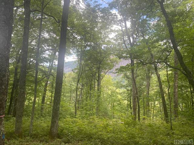57 Ramble Ridge Road, Cashiers, NC 28717 (MLS #97332) :: Berkshire Hathaway HomeServices Meadows Mountain Realty