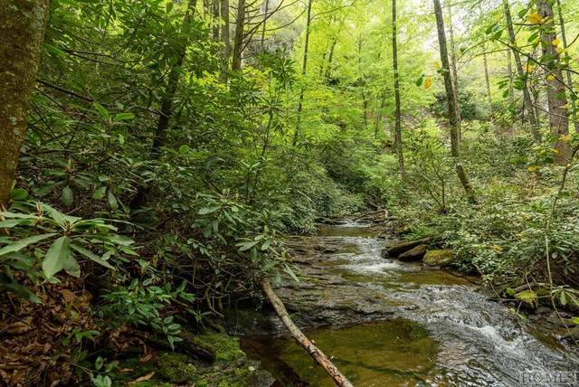Lot 136 Rockhouse Falls Lane, Sapphire, NC 28774 (MLS #97378) :: Berkshire Hathaway HomeServices Meadows Mountain Realty