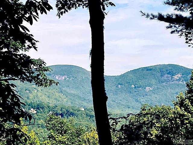 Lot 24 Lakeside Trail, Lake Toxaway, NC 28747 (MLS #97384) :: Berkshire Hathaway HomeServices Meadows Mountain Realty