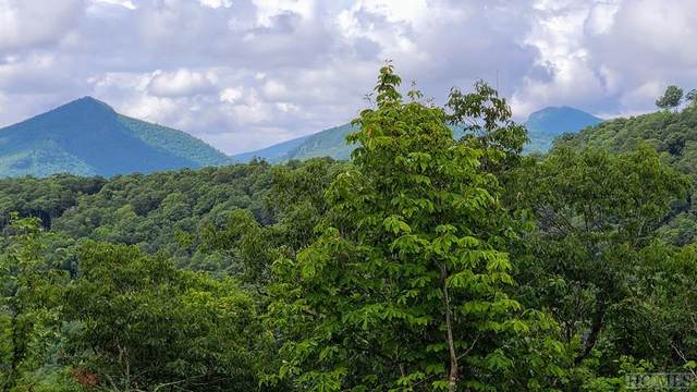Lot 37 Hidden Grouse Lane, Sapphire, NC 28774 (MLS #97402) :: Berkshire Hathaway HomeServices Meadows Mountain Realty