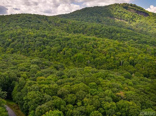 Lot 19 New Settler's Way, Glenville, NC 28736 (MLS #97429) :: Berkshire Hathaway HomeServices Meadows Mountain Realty