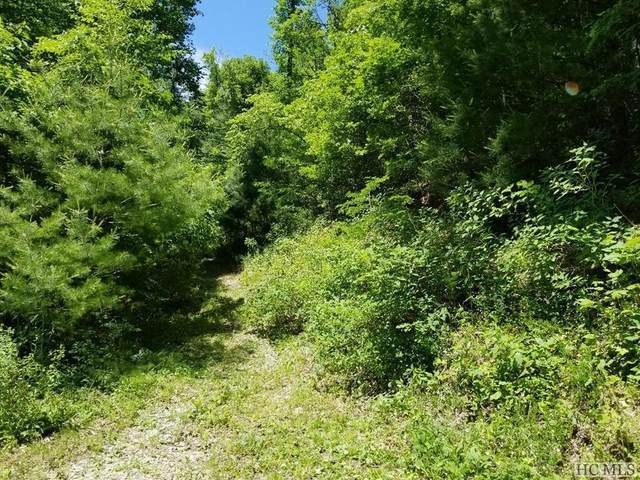 tbd Shoal Creek Road, Scaly Mountain, NC 28775 (MLS #97445) :: Berkshire Hathaway HomeServices Meadows Mountain Realty