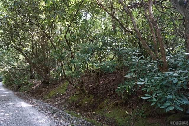Highlands, NC 28741 :: High Vistas Realty
