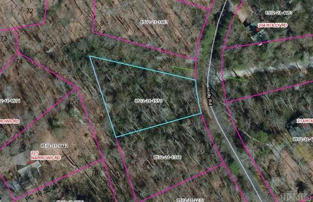 Lot 8 Holly Road, Cashiers, NC 28717 (MLS #97454) :: Pat Allen Realty Group