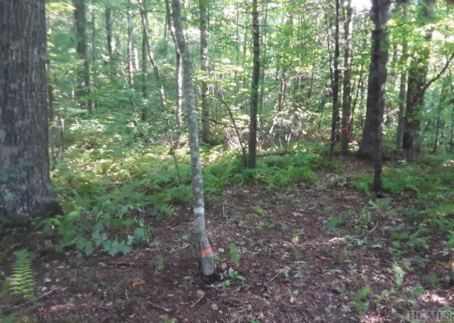 Lot 9 Blackberry Lane, Highlands, NC 28741 (MLS #97462) :: Berkshire Hathaway HomeServices Meadows Mountain Realty