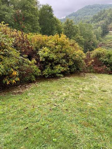 24 Receptive Drive, Glenville, NC 28736 (MLS #97516) :: Berkshire Hathaway HomeServices Meadows Mountain Realty