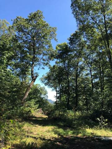 TBD Flat Mountain Road, Highlands, NC 28741 (MLS #97581) :: Berkshire Hathaway HomeServices Meadows Mountain Realty