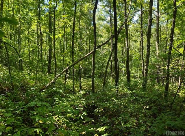 TBD Sr 281, Tuckasegee, NC 28783 (MLS #97591) :: Berkshire Hathaway HomeServices Meadows Mountain Realty
