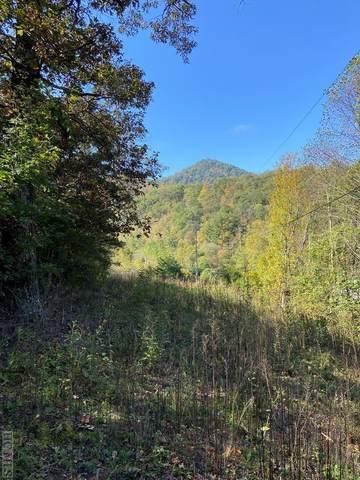 Lot D Us Hwy 107N, Tuckasegee, NC 28783 (MLS #97677) :: Berkshire Hathaway HomeServices Meadows Mountain Realty