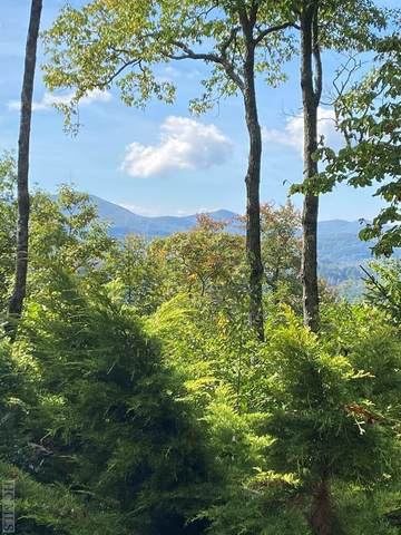 Lot 1 Forest Ridge Road, Cashiers, NC 28717 (MLS #97684) :: Berkshire Hathaway HomeServices Meadows Mountain Realty