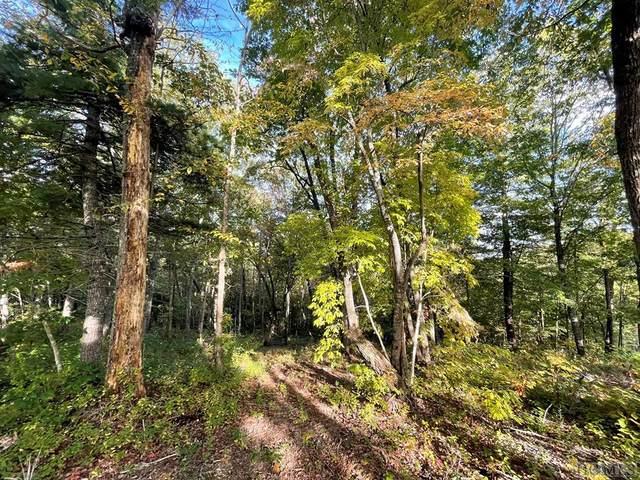Lot A23 Hunter Jim Creek Road, Cullowhee, NC 28723 (MLS #97693) :: Pat Allen Realty Group