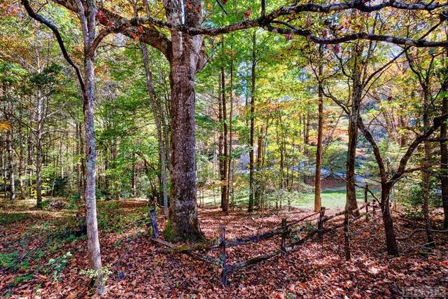 Lot 4 Warwick Trail, Cashiers, NC 28717 (MLS #97711) :: Berkshire Hathaway HomeServices Meadows Mountain Realty