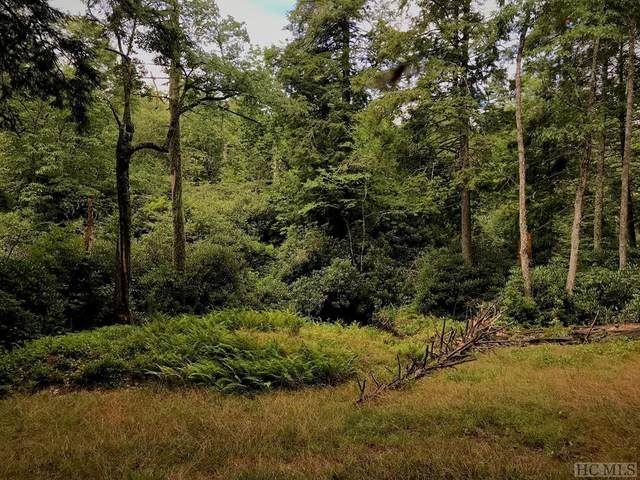 TBD Sagee Woods Drive, Highlands, NC 28741 (MLS #97713) :: Pat Allen Realty Group