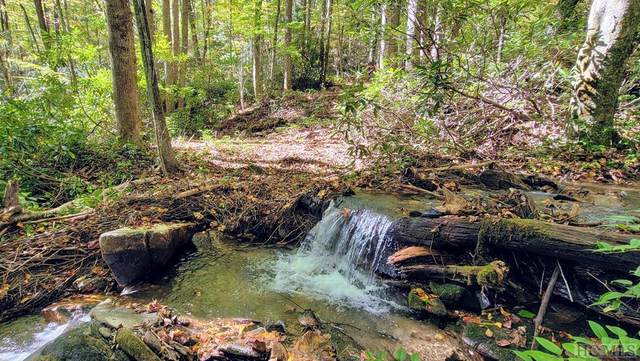 Lot I-2 Speckled Feather Path, Sapphire, NC 28774 (MLS #97728) :: Pat Allen Realty Group