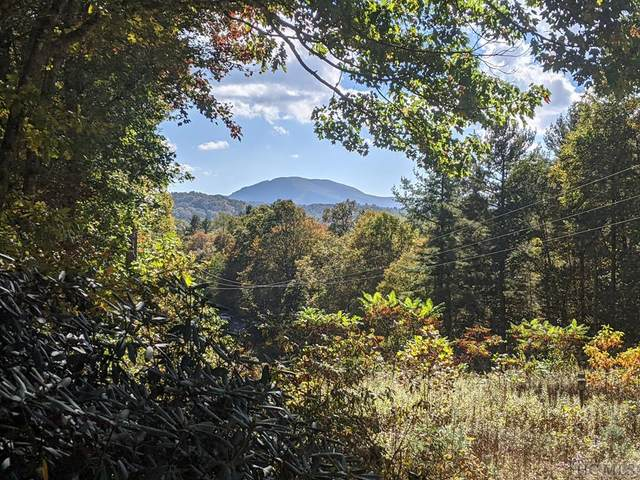 325 Dominion Road, Cashiers, NC 28717 (MLS #97731) :: Pat Allen Realty Group
