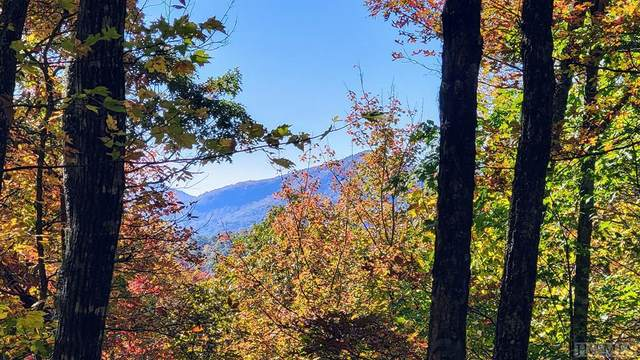 Lot 29 Continental Drive, Sapphire, NC 28774 (MLS #97749) :: Berkshire Hathaway HomeServices Meadows Mountain Realty
