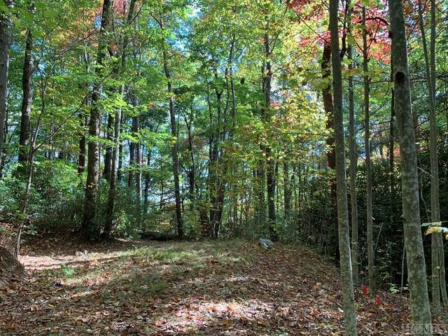 L1 Upper Whitewater Road, Sapphire, NC 28774 (MLS #97754) :: Berkshire Hathaway HomeServices Meadows Mountain Realty