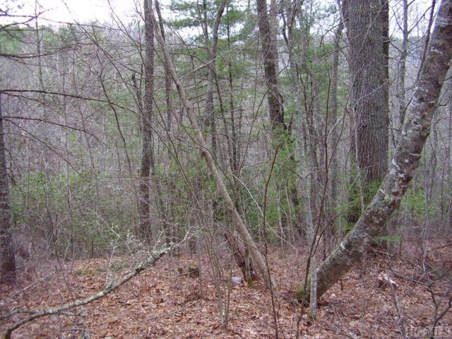 Lot 31 Tahala Trail, Cullowhee, NC 28723 (MLS #83464) :: Berkshire Hathaway HomeServices Meadows Mountain Realty