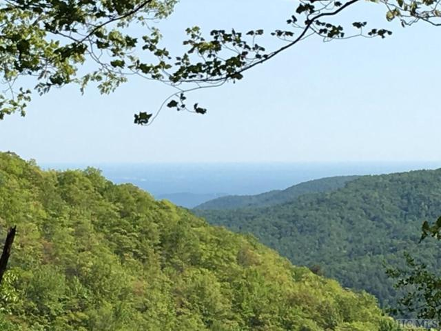 Lot 1/1A Yarak Drive, Sapphire, NC 28774 (MLS #83896) :: Berkshire Hathaway HomeServices Meadows Mountain Realty