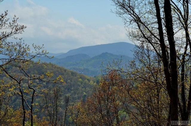 Lot 41 Beechfern Drive, Glenville, NC 28736 (MLS #85946) :: Berkshire Hathaway HomeServices Meadows Mountain Realty