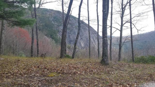 Lot 12 Double Knob Trail, Glenville, NC 28736 (MLS #86181) :: Berkshire Hathaway HomeServices Meadows Mountain Realty