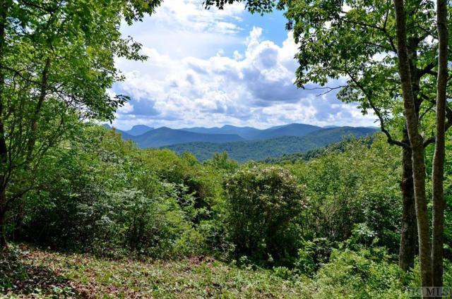 Lot 47 Falcon Ridge Road, Sapphire, NC 28774 (MLS #86584) :: Berkshire Hathaway HomeServices Meadows Mountain Realty
