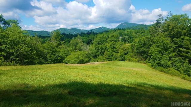 586 Mountain Meadow Lane, Cashiers, NC 28717 (MLS #86718) :: Berkshire Hathaway HomeServices Meadows Mountain Realty