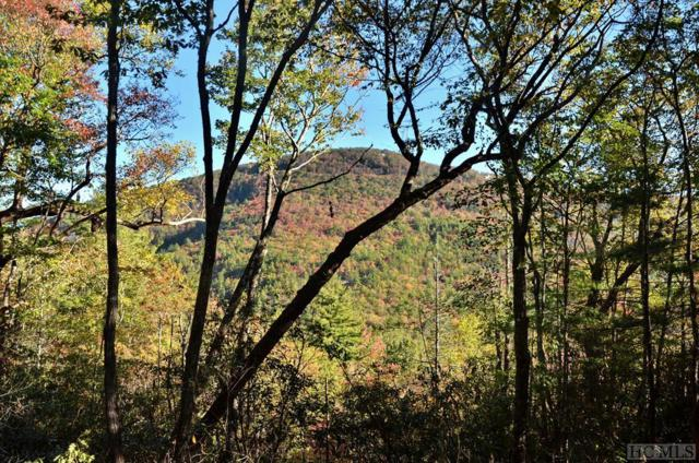 Lot 15 Sapphire Ridge Road, Sapphire, NC 28774 (MLS #87153) :: Lake Toxaway Realty Co