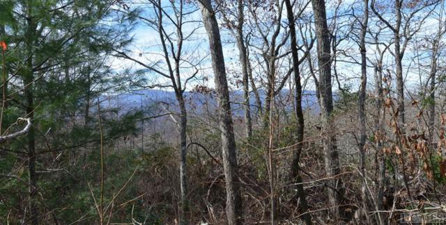 0 Silly Ridge Road, Scaly Mountain, NC 28775 (MLS #87495) :: Lake Toxaway Realty Co
