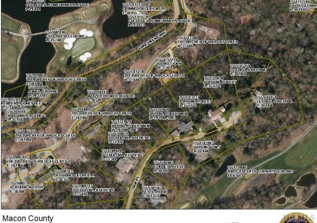 o Birchwood Drive, Highlands, NC 28741 (MLS #87984) :: Berkshire Hathaway HomeServices Meadows Mountain Realty