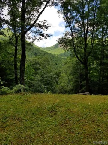 8 - 15 Golf View Road, Sapphire, NC 28774 (MLS #87989) :: Lake Toxaway Realty Co
