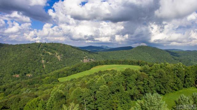 TBD Bee Tree Road, Glenville, NC 28736 (MLS #88008) :: Lake Toxaway Realty Co