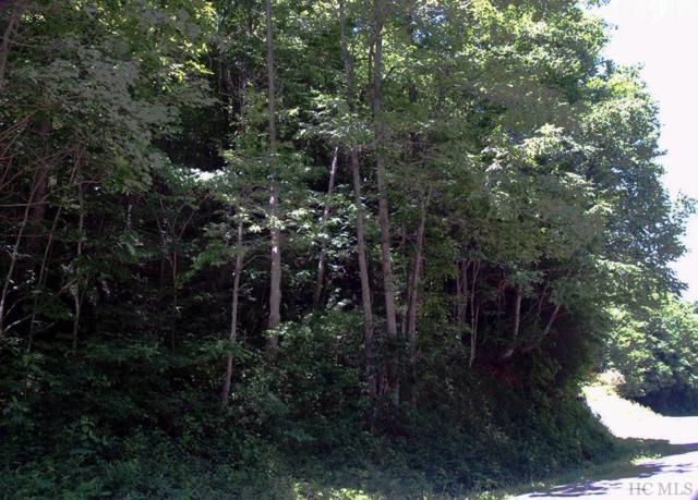 0 Pickens Highway, Rosman, NC 28772 (MLS #88498) :: Berkshire Hathaway HomeServices Meadows Mountain Realty