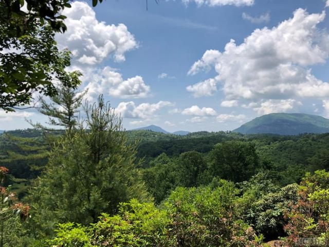E-41 Greenfield Drive, Cashiers, NC 28717 (MLS #88606) :: Lake Toxaway Realty Co