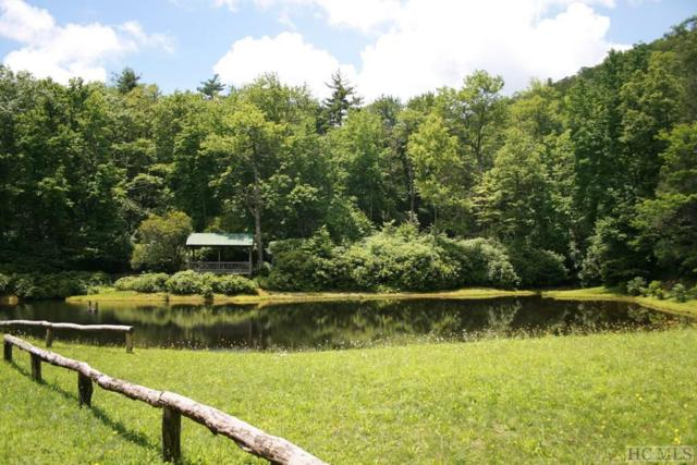 0 Treasurewood Road, Cashiers, NC 28717 (MLS #88837) :: Berkshire Hathaway HomeServices Meadows Mountain Realty