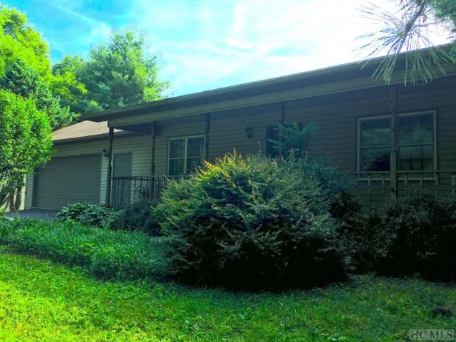 800 Hale Ridge Road, Scaly Mountain, NC 28775 (MLS #88850) :: Lake Toxaway Realty Co