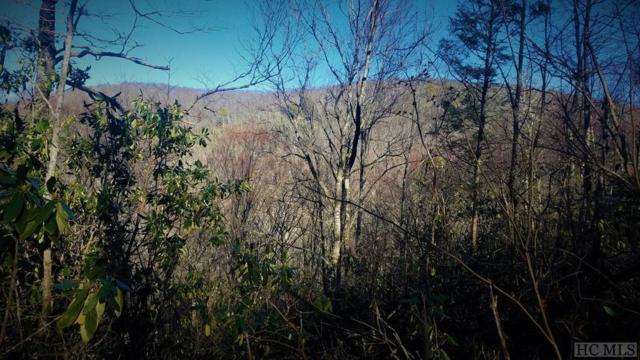 Lot 75 Firesong Lane, Glenville, NC 28736 (MLS #88987) :: Lake Toxaway Realty Co
